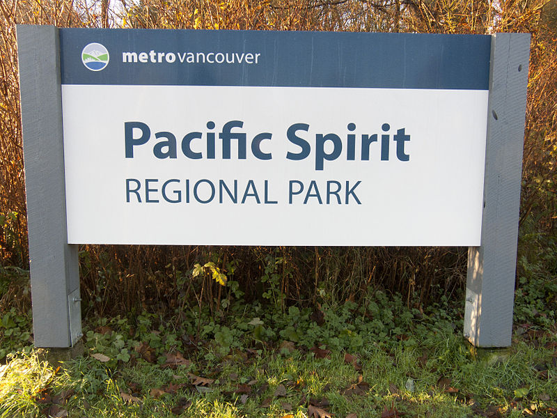Pacific Spirit Park UBC